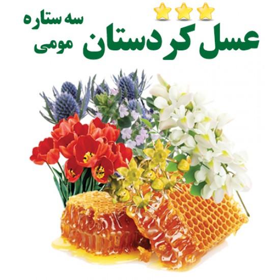 عسل مومی (سه ستاره کردستان) نیم کیلویی