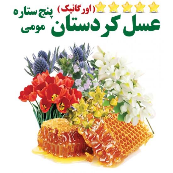 عسل مومی (پنج ستاره کردستان) نیم کیلویی